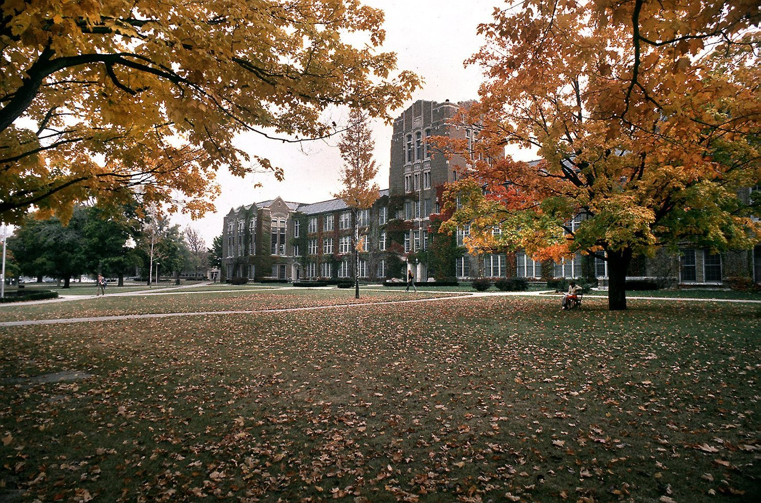 Attractive University building with colorful trees and spacious campus