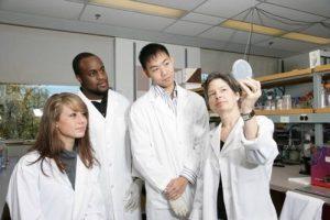 Students looking at a petri dish