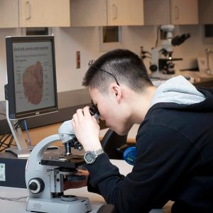 A student viewing a sample through a microscope