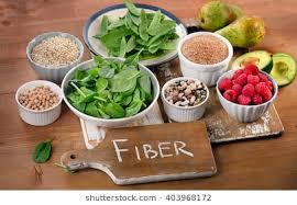 Fiber marketing is gaining popularity in present times