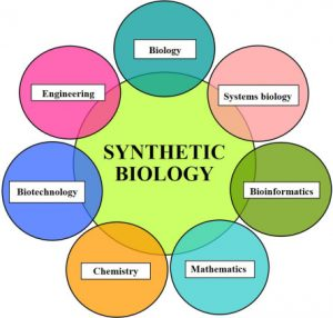 Components of Synthetic biology