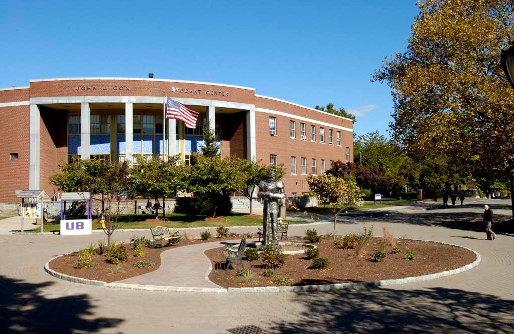 Top 10 Library Resources at University of Bridgeport