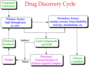 Flow chart showing the basic steps involved in drug discovery and design