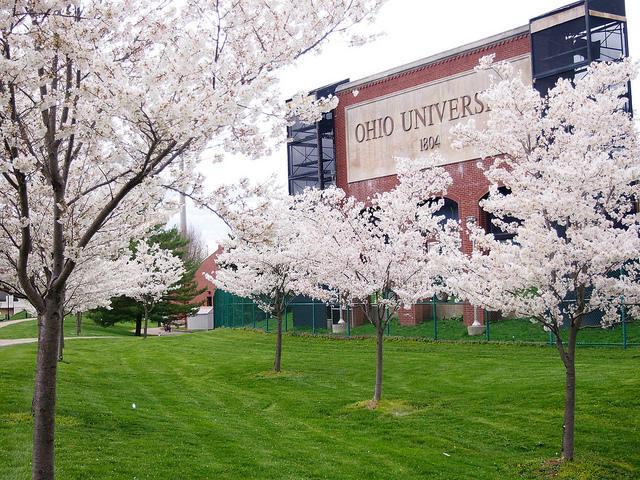 Top 10 Majors at Ohio University