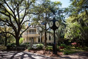 Top 10 Majors at the CofC