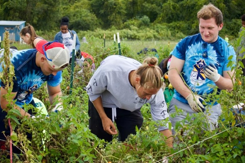 Students taking part in the Community Service Day