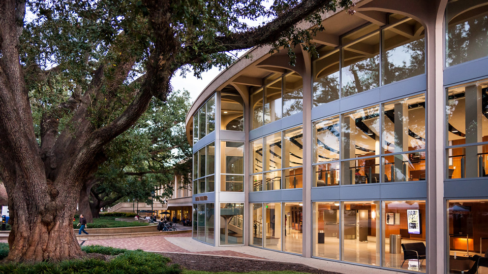 Top 10 Majors Offered at LSU