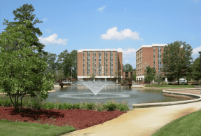 Top 7 Library Resources at the UNCP