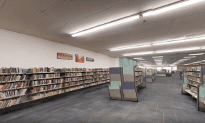 These are the library's collections