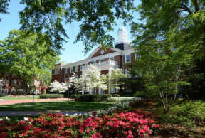 Top 10 Majors Offered at Elon