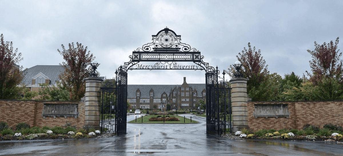Top 10 Majors at Mercyhurst University