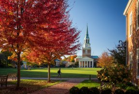 Top 10 Majors at Wake Forest University