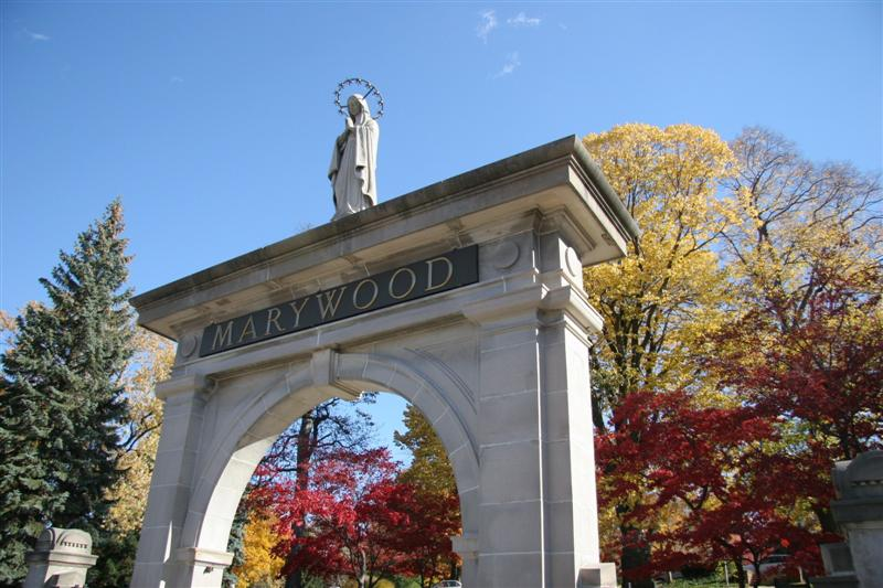 10 of the Coolest Clubs at Marywood University