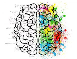 Left brain logic vs. right brain creativity