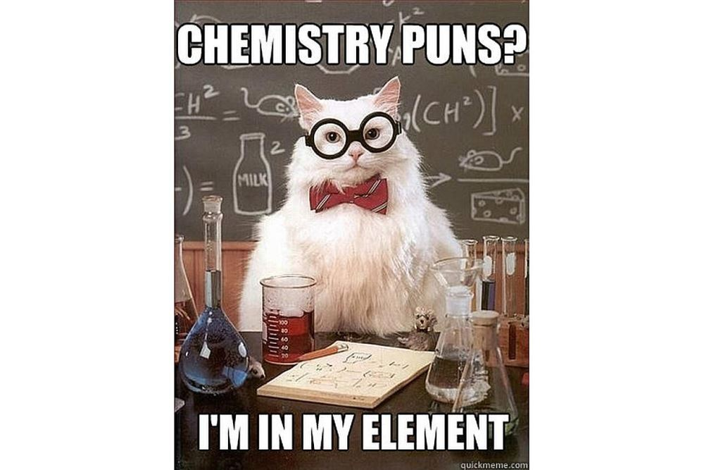 Meme with cat doing chemistry in a class