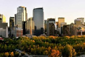 Top 10 Majors at University of Calgary
