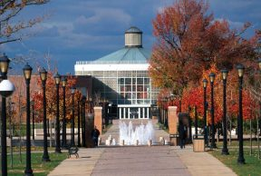 Top 10 Majors at College of Staten Island
