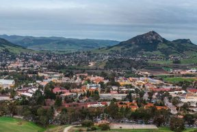 Top 10 Majors Offered at Cal Poly SLO