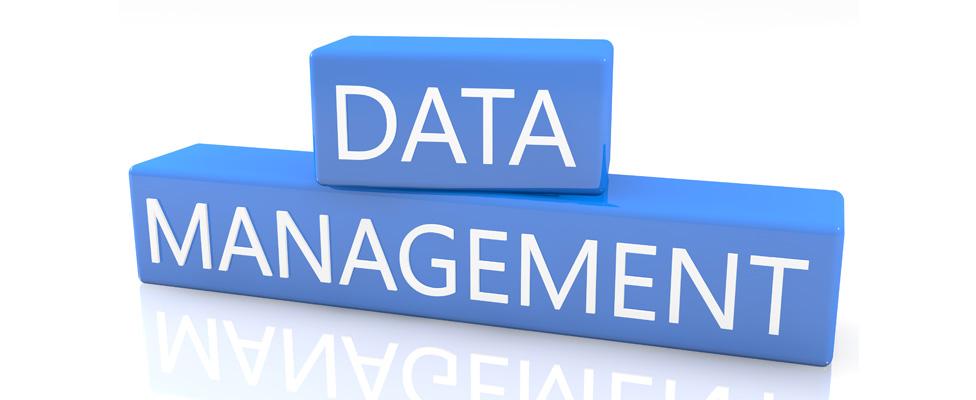 Data Management Logo