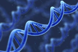 study of genes, genetic variation, and heredity in living organisms