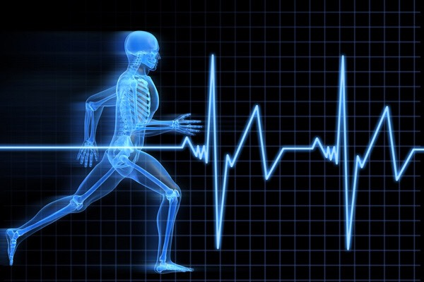illustration of health and exercise science