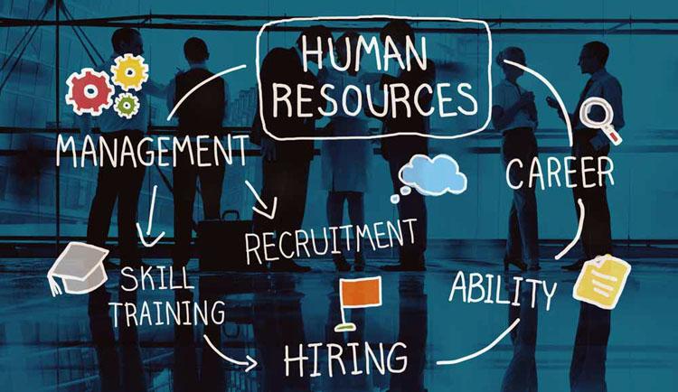 Fundamentals of Human Resource Management Majors at University of Memphis