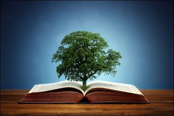 A tree growing out of a book