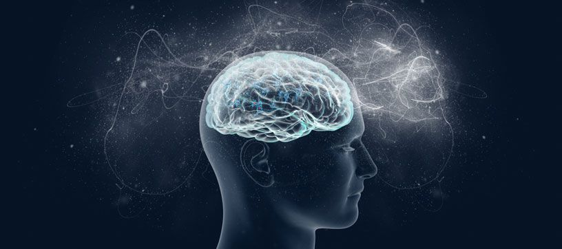 a picture of the human mind