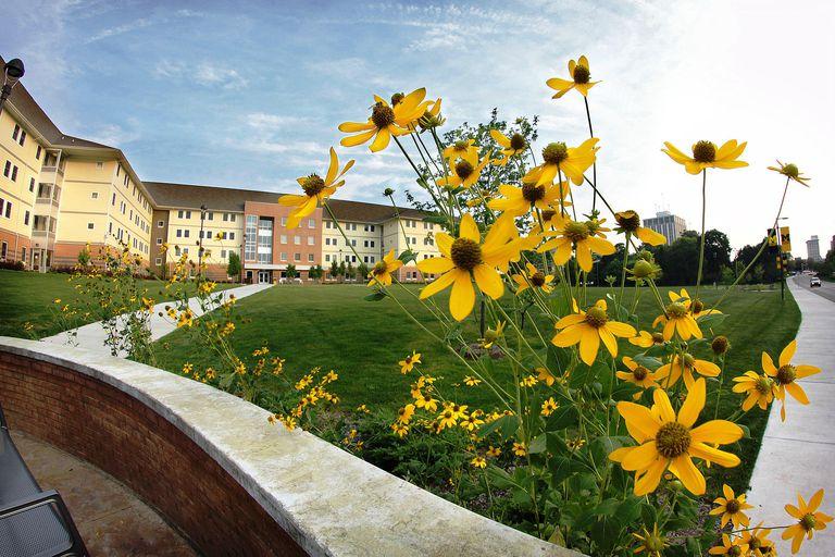10 Hardest Courses at UM Flint