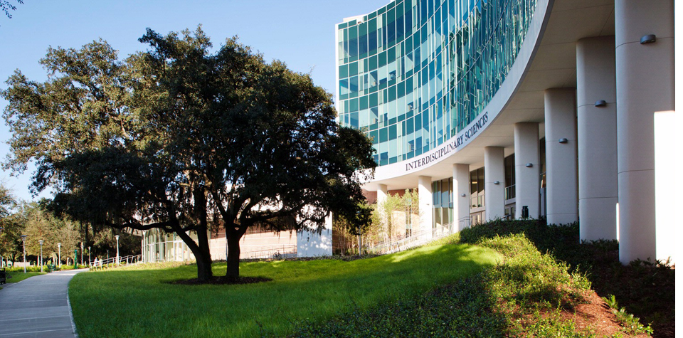 10 Coolest Classes at USF