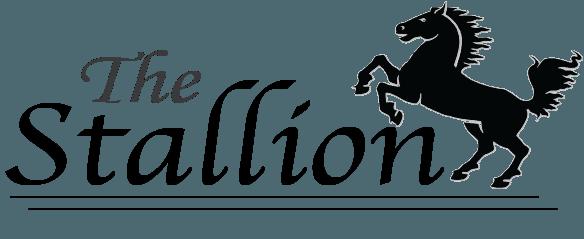 logo for the stallion