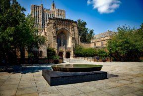 Top 10 Majors at Yale University