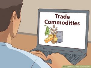 learning about valuable trade commodities on the computer