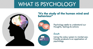 studying about the mind behavior