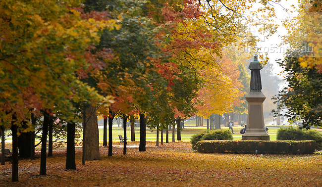 Health and Wellness at University of Notre Dame