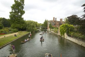 Top 10 Majors at the University of Cambridge