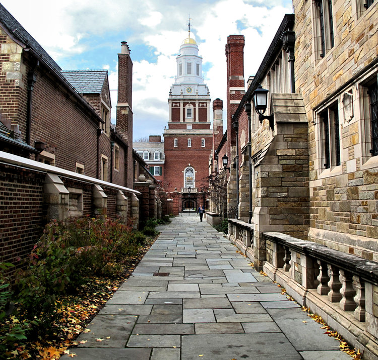 jobs opportunities for students at yale university oneclass blog