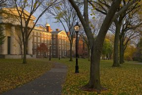 Jobs and Opportunities for Students at Brown University
