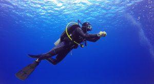 A scuba diver under sea