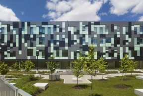 Health and Wellness Services at York University