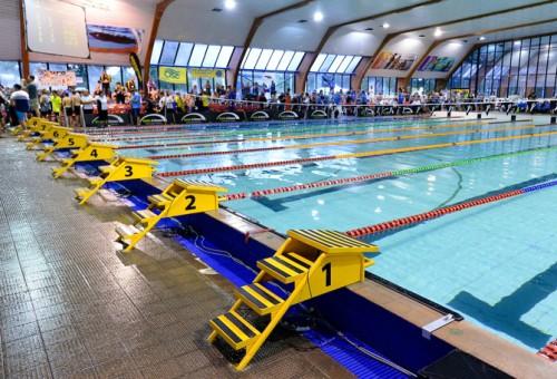 Swimming pool and aquatic staff