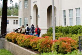 Top 10 Library Resources at the Pacific Union College