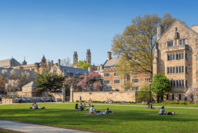 10 Library Resources at Yale University