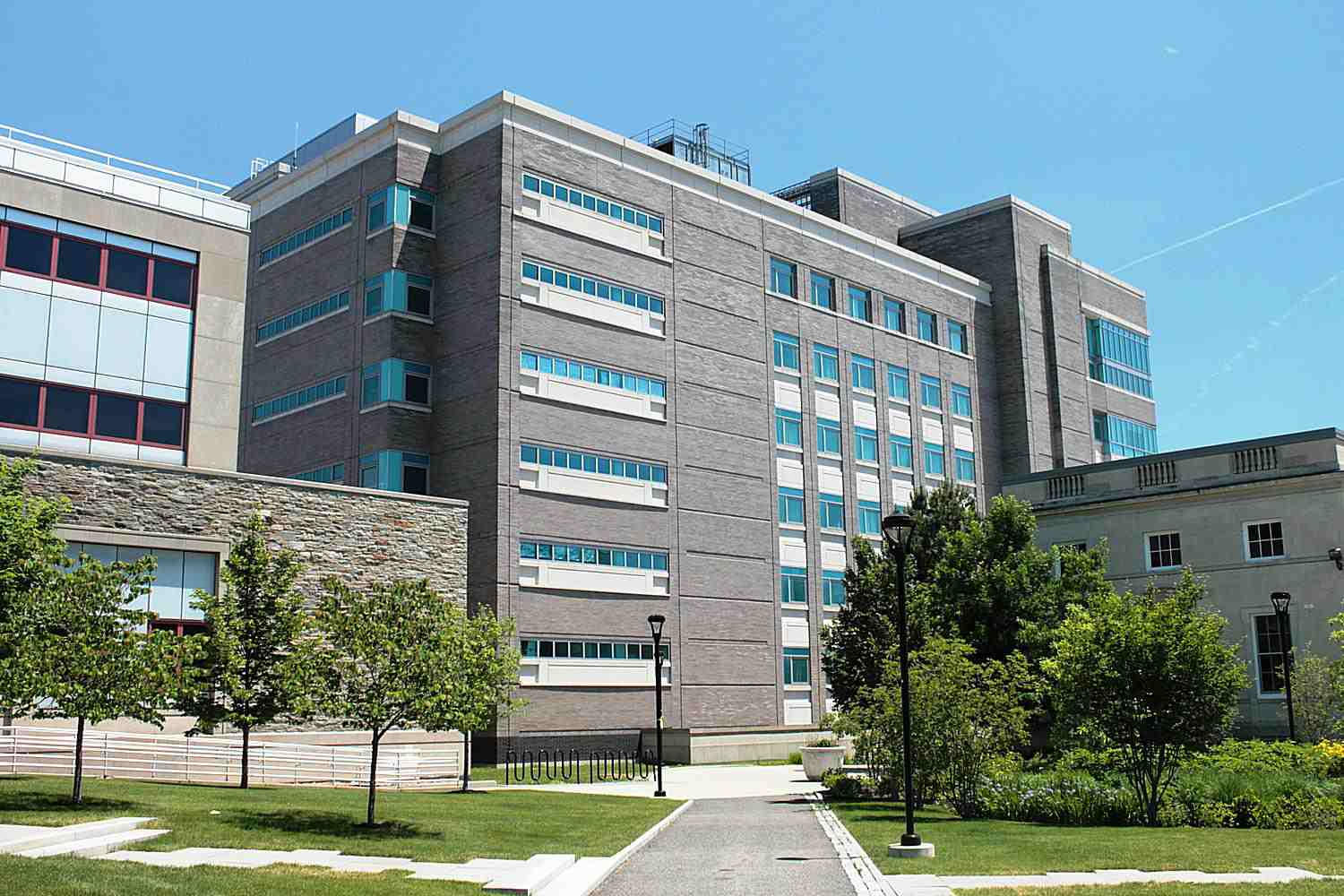 Top 10 Coolest Courses at the University at Buffalo