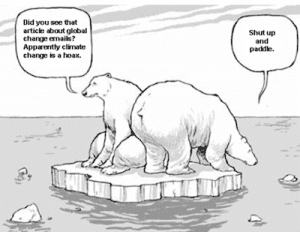 Climate Change Biology.