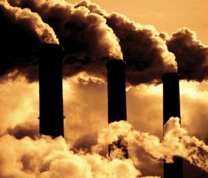 Example of an environmental crisis facing humans today.