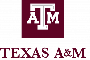 5 Health and Wellness Services at Texas A&M University