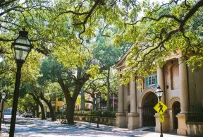 Health and Wellness Services at CofC