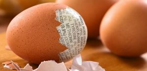 egg peeled with words on it