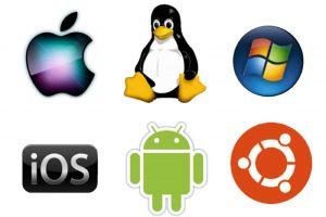 operating sistem vic